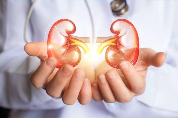 No Kidney Left Behind